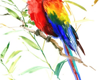 Scarlet nGreen Winged Macaw, parrot art original watercolor painting, 25 x 11 in, red bird art, pets