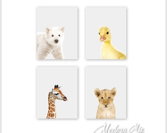 Zoo Animals Nursery Decor Baby Animal Prints Safari Nursery Prints Polar Bear Duck Giraffe and Lion Set of 4 BAPG 001