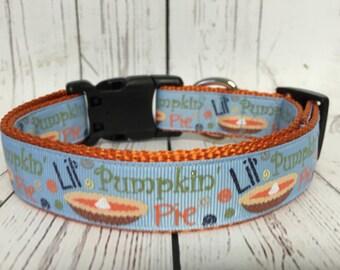Lil' Pumpkin Pie Dog Collar Halloween Fall Thanksgiving