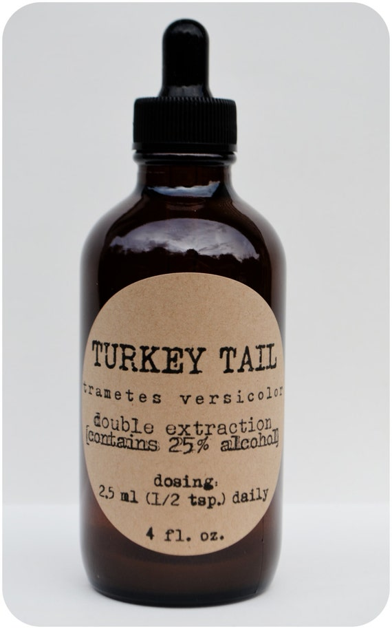 Turkey Tail Trametes Versicolor Tincture Double Extraction