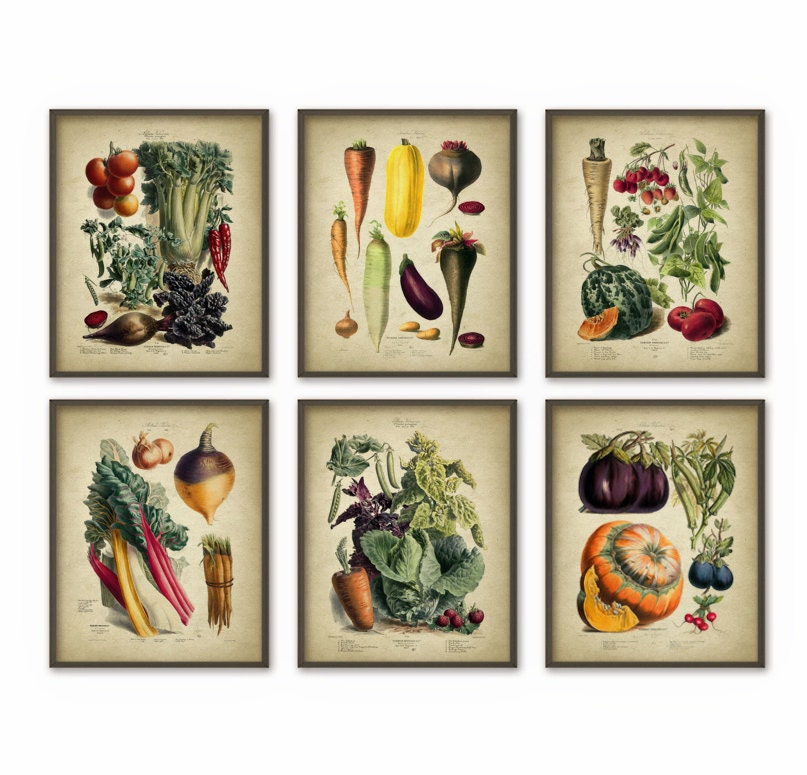 Art Prints For Kitchen Wall: Vegetables Kitchen Wall Art Print Set Of 6 Antique Botanical