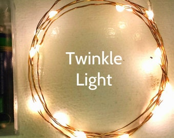Firefly Lights: 20 Warm White Twinkle Lights on 6-ft copper or silver wire.  Great twinkling fairy light effect as LEDs flash independently.