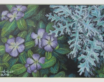 "Impatiens in Rochester, New York - 5""x7"" Colored Pencil Drawing"