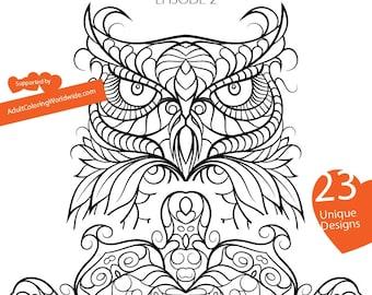 we color adult coloring e book 23 designs flowers mandalas owl