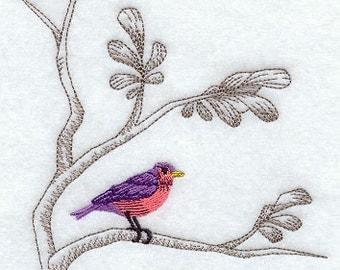 323C Bird on branch
