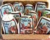 35 TAKE ME Alice in Wonderland Party Favor Bags 3x5 | 4x6 | 6x8 | Color Not Stamped | 10 Original Designs | Gift Bags | Bridal Baby Shower