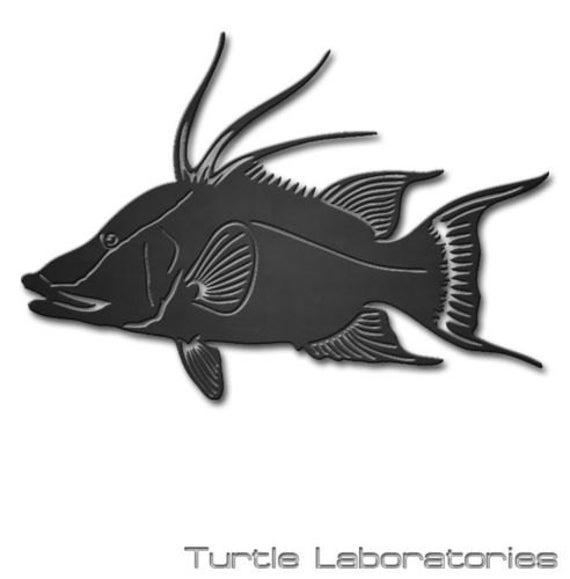 24 Hogfish Fish Silhouette Metal Wall Art Hanging Home
