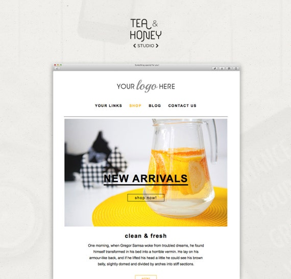mail chimp newsletter templates - mailchimp html template email newsletter clean design