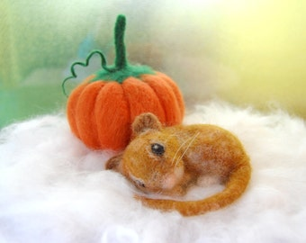Needle Felted Mouse With Felted Pumpkin. Autumn Harvest Decor. Felt Mouse. Autumn Decor. Autumn Decorations. Fall Decorations. Felt Pumpkins