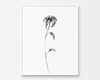 Printable Art, Illustration Print, Nature Print, Flower, Leaves, Black and White, Pencil Sketch, Printable Wall Decor, Wilted Flower