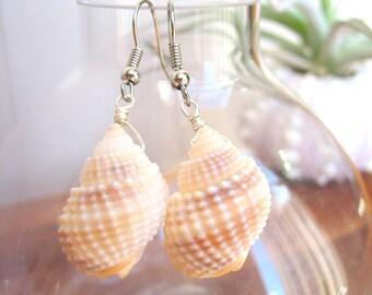 Seashell Earrings, Seashell Dangle Earrings, Seashell Jewelry, Beach Jewelry, Boho Earrings