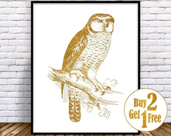 Owl art print, owl wall decor, owl print, owl painting, Gold Wall art, living room wall art, Gold Home Decor, owl illustration, ow