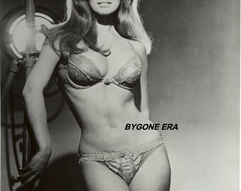 Raquel Welch Bra and Panties Lingerie Pinup Poster Art Photo Artwork 11x14