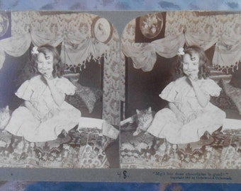 Vintage Antique Underwood Stereo Viewer Card Little Girl Cat