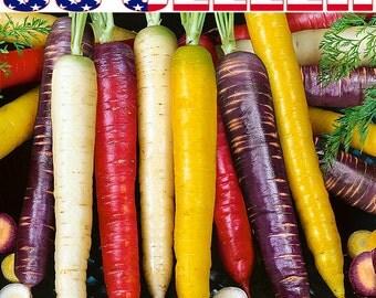 150+ ORGANIC Rainbow Blend Carrot Seeds Heirloom NON-GMO Rare Healthy Flavorful