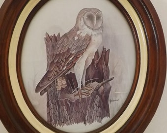 Vintage Owl Matted Amp Framed Prints Set Of 2 E Rambow Owl