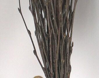 Bundle of Birch Twigs 50 pc, Birch Bark Wedding Decor, Birch Tree Branch, Birch Branches, Rustic Weddings, Decorative Birch, Rustic  Decor