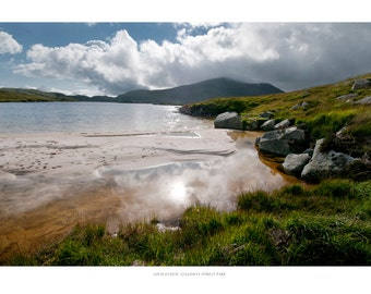 The shores of Loch Enoch, Galloway Forest Park