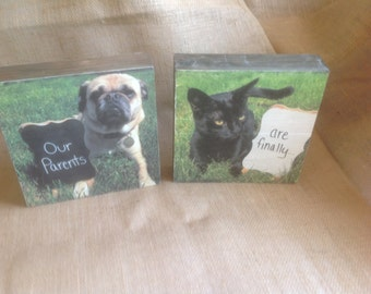 2 Wood boxes with photos