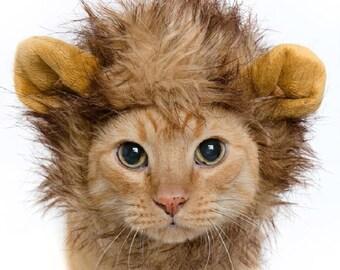 Lion Mane Cat Costume & Small Dog Costume