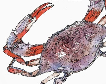 Red Crab Watercolor PRINTABLE  Instant DIGITAL Download