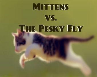 Mittens vs. The Pesky Fly