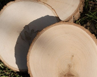 "7""-9"" Round Tree Slice, Rustic Wood Slices, With Bark"