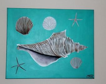Sand dollar sea shell