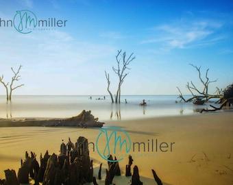 Hunting Island, South Carolina, Fine Art Print, Photography