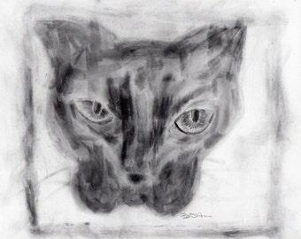 original drawing of a cat