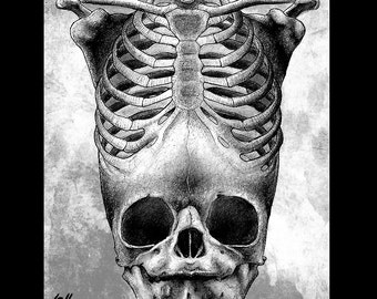 "Print 8x10"" - Skull - Fetal Rib Cage Anatomical Dark Art Horror Lowbrow Antatomy Skeleton Red Gothic Pop Taxidermy Death Cute Gothic Macabre"