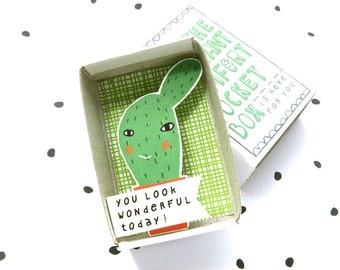 The Instant Comfort Pocket Box - Cactus cheer