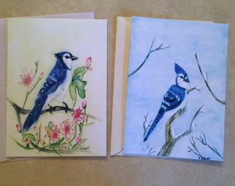Set of two 5 x 7 Bluejay Blank Notecards featuring my original watercolor paintings, Spring and Winter