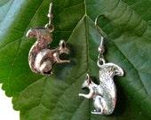 squirrel earrings in silver finish
