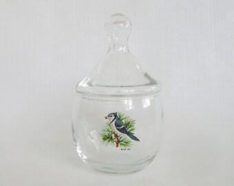 Vintage Blue Jay, Vintage Jar, Bird Jar, Blue Bird, Glass Jar, Votive Holder, Woodland, Vanity Jar, Collectible Glass, Lidded Jar