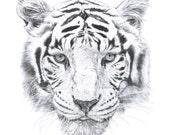 Fabric Wall Decal - Tiger (reusable) NO PVC