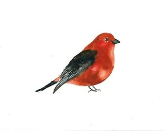 SCARLET TANAGER Original watercolor painting 10x8inch