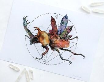 Limited Edition 'Rhinoceros Beetle' Fine Art Print - A4 21 x 29.7cm