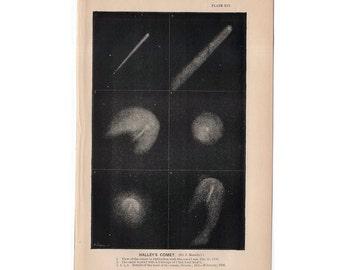 1872 HALLEY'S COMET print original antique celestial astronomy lithograph