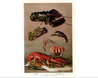 1911 SEAFOOD original antique food lithograph print lobster crab shrimp