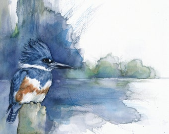 Belted Kingfisher limited edition giclee print of original watercolor painting bird art
