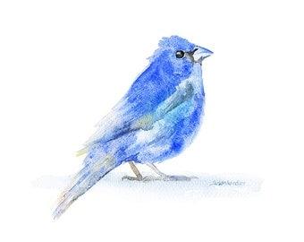 Indigo Bunting Watercolor Painting - 7 x 5 Giclee Print Reproduction - Woodland Animal - Bird Art