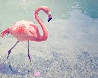 flamingo art, coral nursery art, flamingo print, flamingo nursery art, coral art flamingo, flamingo photography, coral bathroom wall art