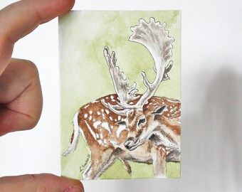 ACEO Print Deer ACEO Limited Edition Art Card Watercolor ACEO Deer Painting Collectible Art Miniature Art Unframed Art Wildlife Art