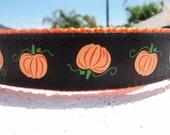 "Sale Halloween Dog Collar Pumpkin Patch 1"" wide side release buckle adjustable - choose webbing color - no martingale - see details for info"