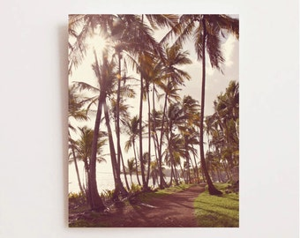 Island Photography - Palm Tree Print - Sunshine - Vintage Inspired - Morning - Tropical Wall Art - Travel Photography - Nature Photography