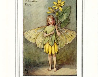 THE CELANDINE FAIRY Vintage Book Plate c. 1940 Original Page Book of the Flower Fairies Cicely Barker