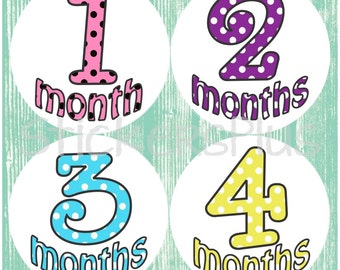 Baby Girl Month Stickers Plus FREE Gift PRECUT Stickers Polka Dot Fun Numbers  PRECUT Photo Prop Monthly Baby Stickers 1-12 or 13-24 M