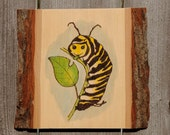 Monarch Caterpillar Watercolor Painting on Wood burned Plaque, Wall Art, Nursery Art, Whimsical, ,Nature,Monarch, Caterpillar,Robin Arnold