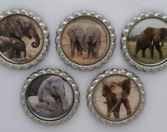 Elephants bottle cap magnets